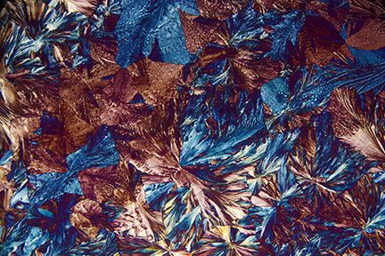 """Jubilation"" (Aspirin Crystals) by Carol Roullard. This photograph is courtesy of Carol Roullard."