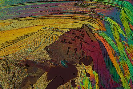 """""""Unexpected sights - Bear,"""" (Adipic Acid Crystals,) by Carol Roullard. This photograph is courtesy of Carol Roullard."""